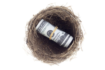 A roll of money inside a bird's nest.